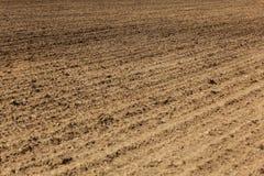 新近地耕了领域,从犁的线可看见在地面 抽象农业背景 库存图片