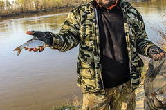 新近地被抓的小鱼在渔夫手上 免版税库存图片