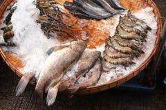 新近地被抓的鱼和srimp在鱼市、缅甸& x28; Burma& x29; 库存照片