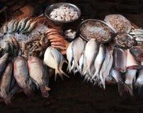 新近地被抓的鱼和srimp在鱼市上,缅甸缅甸 免版税库存照片