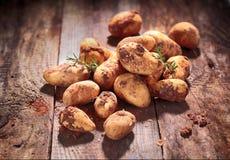 新近地被收获的农厂土豆 免版税图库摄影
