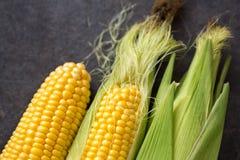 新近地被收获的玉米 免版税图库摄影