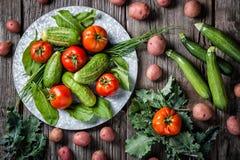 新近地被收获的黄瓜、蕃茄、红色土豆、无头甘蓝、夏南瓜南瓜和无头甘蓝产物场面在土气背景 免版税库存图片