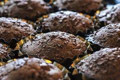 新近地被烘烤的巧克力杯形蛋糕 免版税库存图片