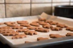 新近地被烘烤的自创保险开关曲奇饼 免版税库存照片