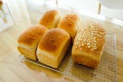 新近地被烘烤的自创全麦五谷面包 库存图片
