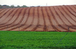 新近地被犁的农田 免版税库存图片