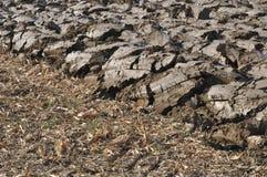 新近地被耕的域 免版税库存图片