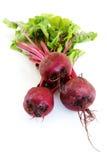 新近地被采摘的甜菜根 免版税库存图片