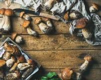 新近地被采摘的白色森林蘑菇,叶子,在木背景的刀子 库存照片