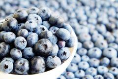 新近地被采摘的蓝莓backgrond 背景蓝莓食物健康有机 在白色背景顶视图,平的位置样式的蓝莓 免版税库存照片