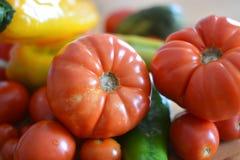 新近地被采摘的蕃茄和新鲜的胡椒 免版税库存图片