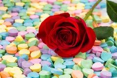新近地选拔裁减在五颜六色的心形的糖果的红色玫瑰 图库摄影