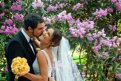 新郎亲吻他她的面颊的美丽的新娘 免版税库存照片