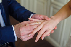 新郎佩带新娘在她的手指的一只金戒指 库存图片