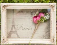 新郎变粉红色在箱子的钮扣眼上插的花有巴黎布料背景 免版税库存图片