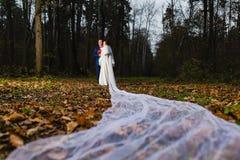 新郎和新娘有非常长的新娘面纱的 免版税库存照片