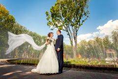 新郎和新娘有面纱的在公园 免版税库存图片