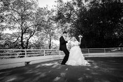 新郎和新娘 免版税库存图片