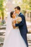 新郎在晴朗的公园亲吻头的新娘 敏感大气 免版税库存图片