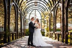 新郎拥抱一件白色礼服的新娘在温室背景  免版税库存照片