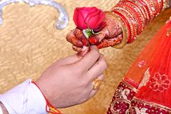 新郎给新娘的花 图库摄影