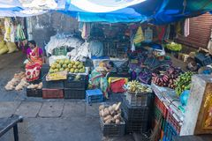 新闻纪录片的社论图象 在他的水果和蔬菜的一个未认出的印地安人在一个小乡村市场上购物在泰米尔纳德邦 库存图片