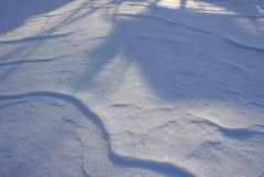 新雪表面在晴朗的冬日 免版税图库摄影