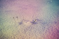 新雪表面在晴朗的冬日 库存图片