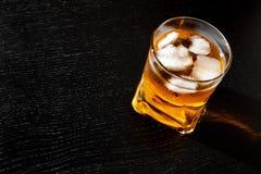 新饮料看法上面与冰的 免版税库存照片