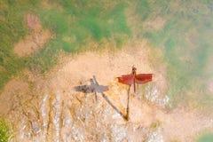 新鲜五颜六色的红色的蜻蜓风行在河沿的干分支树与反射在湿沙子背景的黑色阴影和 图库摄影