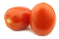 新鲜和五颜六色的意大利人罗马蕃茄 库存照片