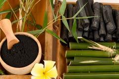新鲜和干竹和竹木炭粉末 免版税图库摄影