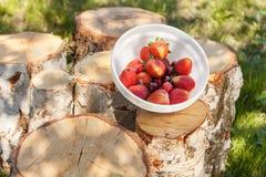 新鲜和开胃草莓用在木日志的红色樱桃 免版税库存照片