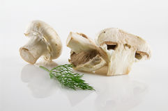 新鲜和开胃蘑菇 免版税库存照片