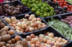 新鲜和有机蔬菜在农夫市场上 免版税库存照片