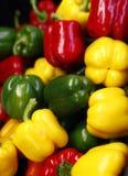 新鲜和红色,绿色和黄色辣椒粉 免版税库存照片