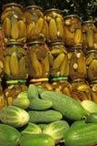 新鲜和罐装黄瓜 库存图片