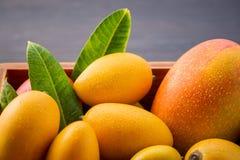 新鲜和美丽的芒果果子在黑暗的木背景,拷贝spacetext空间的一个木箱设置了 免版税库存图片