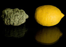 新鲜和腐烂的柠檬,黄色水多 免版税库存图片