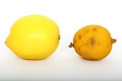 新鲜和陈旧的柠檬 免版税库存图片