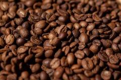 新鲜咖啡豆 库存图片