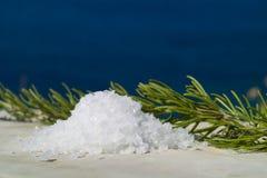 新鲜收集的盐和rosmary在海景 免版税库存照片