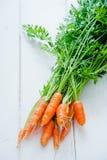 新鲜束的红萝卜 免版税库存图片