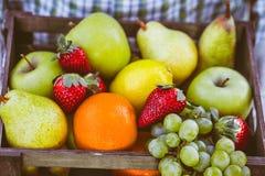 新鲜水果和农夫 图库摄影