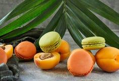 新鲜水果和macaron在棕榈分支的背景 免版税图库摄影
