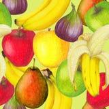 新鲜水果的无缝的样式 库存图片