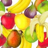 新鲜水果的无缝的样式 免版税库存图片