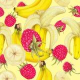 新鲜水果的无缝的样式 图库摄影