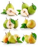 新鲜水果绿色叶子梨集 库存图片